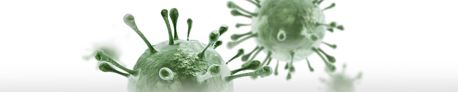 Neosine - Jak powstają infekcje